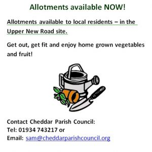 Allotments available NOW 5